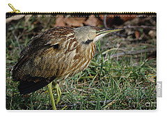 Carry-all Pouch featuring the photograph American Bittern by Douglas Stucky