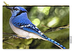 Blue Jay Bokeh Carry-all Pouch