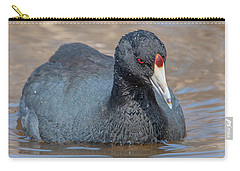 American Coot Dmsb0140 Carry-all Pouch