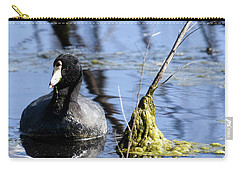 Carry-all Pouch featuring the photograph American Coot by Gary Wightman
