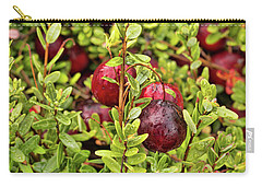 American Cranberry Carry-all Pouch