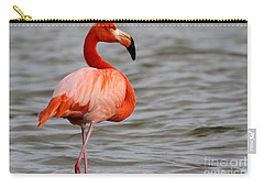 American Flamingo Carry-all Pouch by Meg Rousher