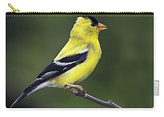 American Golden Finch Carry-all Pouch