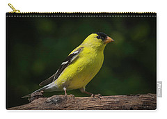 American Goldfinch Male Carry-all Pouch