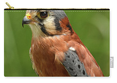 Carry-all Pouch featuring the photograph American Kestrel by Ann Bridges