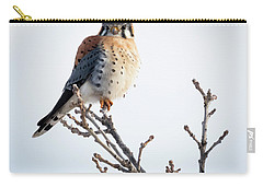 Carry-all Pouch featuring the photograph American Kestrel At Bender by Ricky L Jones