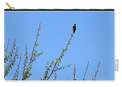 American Kestrel Atop Pecan Tree Carry-all Pouch