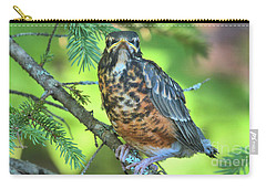 Carry-all Pouch featuring the photograph American Robin Fledgling by Debbie Stahre
