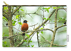 American Robin On Tree Branch Carry-all Pouch