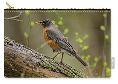 American Robin Carry-all Pouch by Ray Congrove