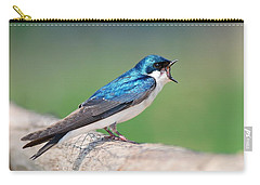 American Tree Swallow Carry-all Pouch