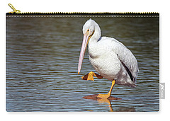 American White Pelican 3318-032918-1cr Carry-all Pouch