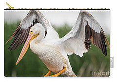 American White Pelican Perched Carry-all Pouch by Ricky L Jones