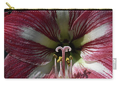 Carry-all Pouch featuring the photograph Amaryllis Flower Close-up by Sally Weigand