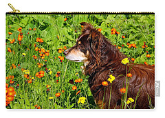 An Aussie's Thoughtful Moment Carry-all Pouch by Debbie Oppermann
