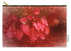 Carry-all Pouch featuring the photograph An Autumn Bunch by Elaine Teague