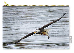 An Eagles Catch 12 Carry-all Pouch by Brook Burling