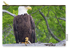 An Eagles World Carry-all Pouch