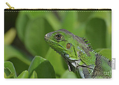 An Up Close Look At A Green Iguana Carry-all Pouch by DejaVu Designs