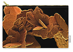Carry-all Pouch featuring the photograph Ancient History by Lynda Lehmann