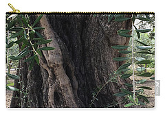 Ancient Old Olive Tree Spain Carry-all Pouch by Colette V Hera Guggenheim