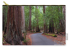 Ancient Redwoods Carry-all Pouch