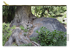 Ancient Tree On A Rock Carry-all Pouch