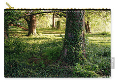 Ancient Trees Carry-all Pouch