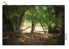 Angustown 2 Carry-all Pouch by Cynthia Lassiter