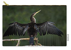 Anhinga Carry-All Pouches