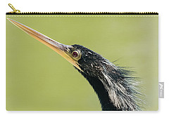 Carry-all Pouch featuring the photograph Anhingha Bird In Key West by Bob Slitzan