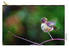 Anna's Hummingbird IIi Carry-all Pouch
