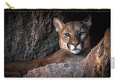 Carry-all Pouch featuring the photograph Annoyed Look by Elaine Malott