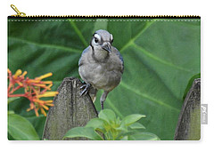 Carry-all Pouch featuring the photograph Another Young Un by Carol Bradley
