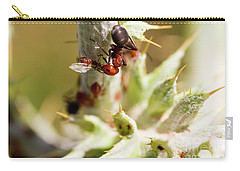 Ant Farming Carry-all Pouch