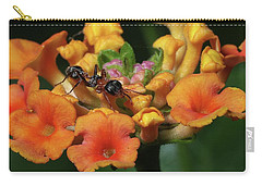 Carry-all Pouch featuring the photograph Ant On Plant  by Richard Rizzo