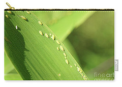 Aphid Family Carry-all Pouch