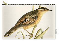 Aquatic Warbler Carry-all Pouch by English School