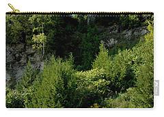 Carry-all Pouch featuring the photograph Arch Rock Mackinac Island by LeeAnn McLaneGoetz McLaneGoetzStudioLLCcom