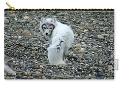Arctic Fox Carry-all Pouch by Anthony Jones