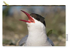 Arctic Tern - St John's Pool, Scotland Carry-all Pouch
