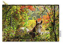 Carry-all Pouch featuring the photograph Are You My Friend? by Jeff Folger