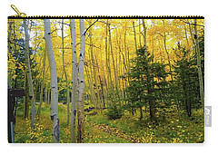 Carry-all Pouch featuring the photograph Arizona Fall by Broderick Delaney