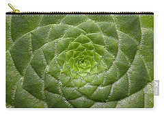 Artistic Nature Green Aeonium Cactus Macro Photo 203 Carry-all Pouch