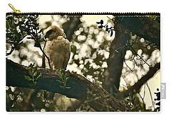 Io - Hawaiian Hawk Carry-all Pouch