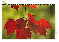Carry-all Pouch featuring the photograph As Red As They Can Be by Aimelle