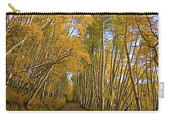 Carry-all Pouch featuring the photograph Aspen Alley by Steve Stuller