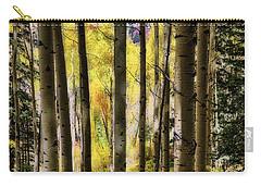 Aspen Mood - Autumn - Colorful Colorado Carry-all Pouch