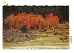 Aspen, October, Hope Valley Carry-all Pouch