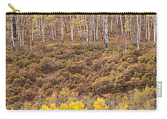 Carry-all Pouch featuring the photograph Aspen Patterns by Patricia Davidson